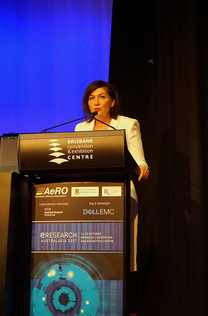 As a keynote speaker, Queensland Science Minister Leeanne Enoch talked about her government's commitment to eResearch and research in general.
